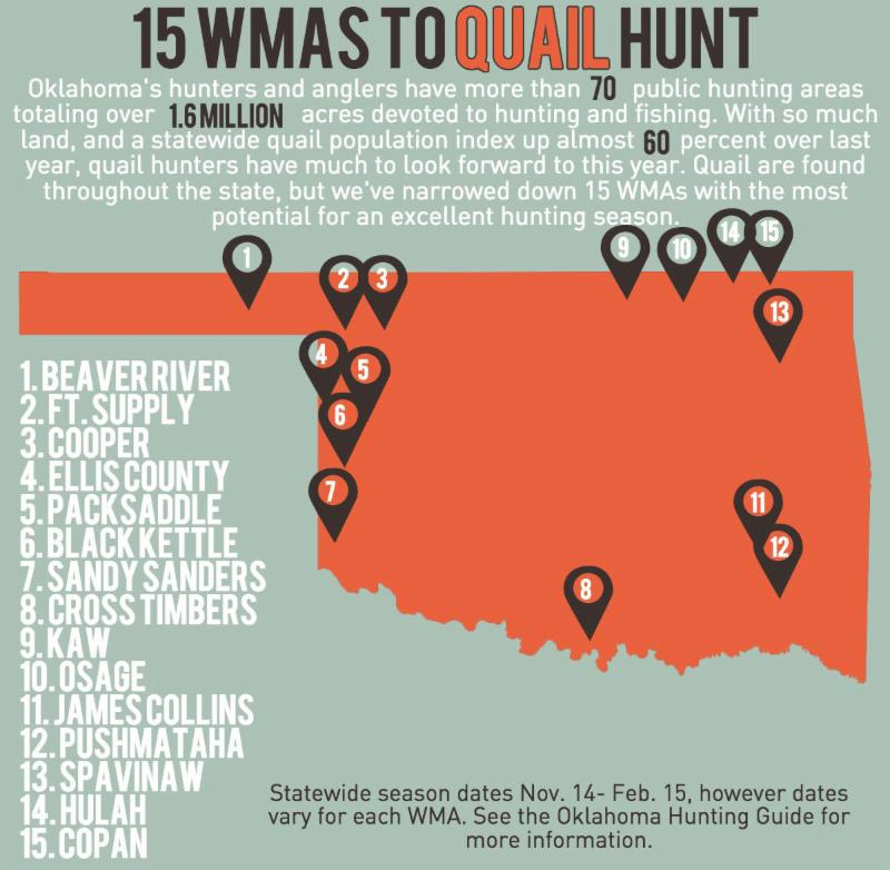 """Shown here are some of wildlife management areas where hunters stand to find some good opportunities to harvest quail. Open dates vary on many WMAs, so hunters should always consult the Special Area Regulations section in the """"Oklahoma Hunting"""" regulations guide before going afield. (Kelly Adams/ODWC)"""